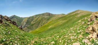 Opinión superior del valle verde ancho de la montaña Fotografía de archivo libre de regalías