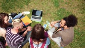 Opinión superior el grupo de amigos de la universidad que disfrutan de día soleado en campus almacen de video