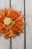 Opinión superior hervida de los cangrejos foto de archivo libre de regalías