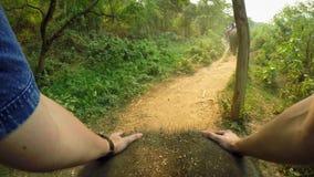 opinión superior 4K el elefante asiático mientras que un paseo del grupo de los turistas a través del bosque metrajes