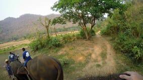 opinión superior 4K el elefante asiático mientras que un paseo del grupo de los turistas a través del bosque almacen de metraje de vídeo