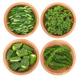 Opinión superior las cebollas verdes de la rebanada, semillas de la pimienta, melón amargo, Zanthoz Imágenes de archivo libres de regalías