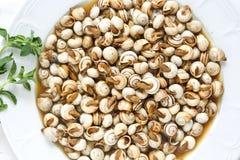 Opinión superior los caracoles cocinados (caracol) Imagen de archivo libre de regalías