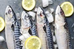 Opinión superior pescados crudos frescos con las rebanadas de limón Proceso de cocinar la harina de pescado sabrosa fotografía de archivo