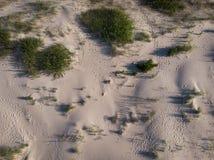 Opinión superior sobre la costa costa de la arena al mar Imagen de archivo libre de regalías