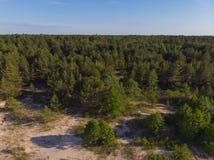 Opinión superior sobre la costa costa del bosque al mar Imagenes de archivo