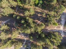 Opinión superior sobre la costa costa del bosque al mar Foto de archivo libre de regalías