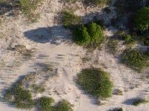 Opinión superior sobre la costa costa del bosque al mar Imágenes de archivo libres de regalías