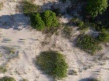 Opinión superior sobre la costa costa del bosque al mar Imagen de archivo libre de regalías