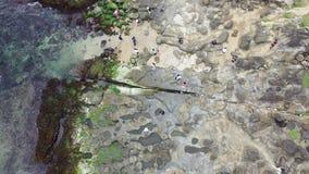 Opinión superior sobre la playa rocosa cerca de la roca del tronco del elefante en Taiwán, 4k almacen de metraje de vídeo