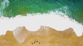 Opinión superior sobre siluetas de la gente que camina descalzo a lo largo de la playa mojada del océano de la arena Costa portug metrajes