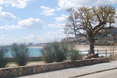 Opinión Tarragona de la playa Foto de archivo libre de regalías