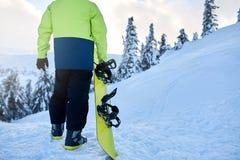 Opinión trasera el snowboarder que sube con su tablero en el soporte para la sesión backcountry del freeride en el hombre del bos fotos de archivo
