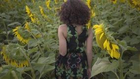 Opinión trasera la muchacha rizada hermosa que corre con las filas de girasoles en el campo del girasol Color amarillo brillante almacen de metraje de vídeo