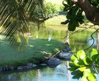 Opinión tropical de casa de playa fotos de archivo