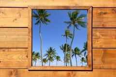 Opinión tropical de las palmeras de la ventana de madera Fotos de archivo