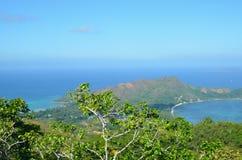 Opinión tropical del bosque en la isla de Seyshelles Fotografía de archivo libre de regalías