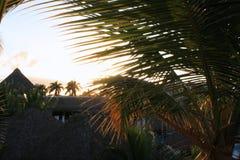 Opinión tropical del centro turístico Imagen de archivo libre de regalías