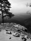 Opinión ventosa de la mañana del invierno al este Fotografía de archivo