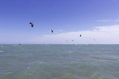 Opinión y cometas del mar Imagen de archivo
