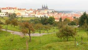 Opiniónes sobre Praga de la altura de la colina de Petrin Fotos de archivo libres de regalías