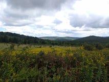 Opiniões cênicos do parque estadual das montanhas de Grayson foto de stock royalty free
