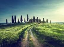 Opiniões clássicas de Tuscan no tempo do por do sol da mola, Pienza fotos de stock