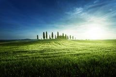 Opiniões clássicas de Tuscan no tempo do por do sol da mola, Pienza, Itália imagem de stock royalty free
