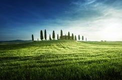 Opiniões clássicas de Tuscan no tempo do por do sol da mola, Pienza, Itália fotografia de stock royalty free