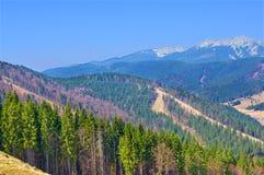Opiniões da paisagem das montanhas no tempo de mola Fotos de Stock