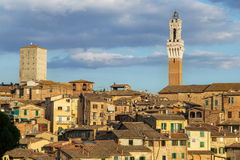 Opiniões panorâmicos da cidade da tarde de Siena Fotos de Stock