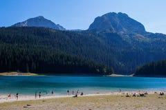 Opini?es de Paradise do parque nacional Durmitor em Montenegro ?gua de turquesa do lago, da floresta do pinho e das montanhas Atu fotografia de stock