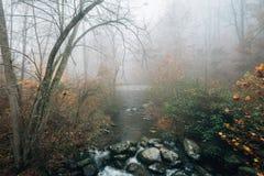 Opini?n de niebla del oto?o Tye River, cerca de las ca?das de Crabtree, en George Washington National Forest, Virginia fotos de archivo libres de regalías