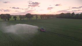 Opini?n del abej?n: situaci?n del canon del agua en un campo en la puesta del sol almacen de video