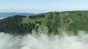 Opini?n a?rea de la cantidad del abej?n: Vuelo sobre las monta?as del oto?o con los bosques, los prados y las colinas en luz suav almacen de metraje de vídeo