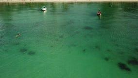 Opini?n a?rea la superficie transparente del mar verde con las ondas ligeras y la alga marina profundizada almacen de video