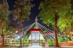 Opini?o da noite do jardim do mundo do mundo Flora Exposition de Taichung fotos de stock royalty free