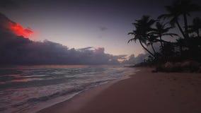 Opini?o do mar do nascer do sol e praia tropical da ilha em Punta Cana, Rep?blica Dominicana video estoque
