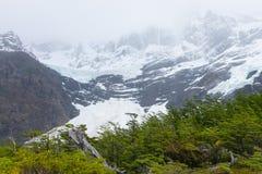 Opini?o francesa do vale, Torres del Paine, o Chile foto de stock