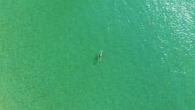 A opini?o superior a jovem mulher no biquini brilhante est? nadando no mar transparente, azul Opinião aérea a mulher magro que fl vídeos de arquivo