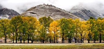 Opinión de la nieve de la aldea tibetana en el Shangri-la China Foto de archivo libre de regalías