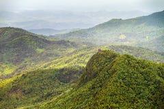 Opinión de la selva de Torre Britton Fotografía de archivo