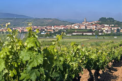 Opinión del pueblo con el viñedo en paisaje rural Imagenes de archivo
