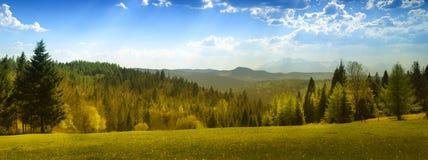 Opinión del verano de las montañas de Tatra Foto de archivo
