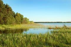Opinión hermosa del lago Foto de archivo libre de regalías