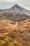 Opiniónes alrededor de Snowdonia Imagen de archivo