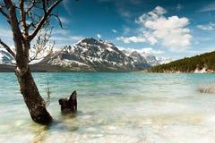Opinião cênico do St Mary Lake Fotos de Stock