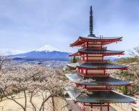 Opinião do pagode e do sakura de Chureito com fundo de Mt.fuji Imagens de Stock