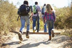 Opinião traseira a família que caminha no campo Foto de Stock Royalty Free