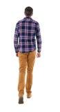 Opinião traseira o homem considerável indo na camisa quadriculado Foto de Stock